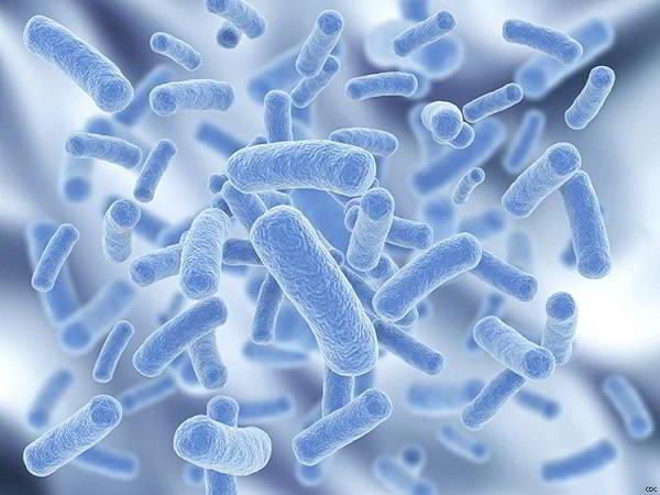 probiotics-tot-cho-hoi-chung-ruot-kich-thich