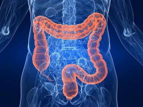 Thông tin cần biết về Hội chứng ruột kích thích – Đại tràng co thắt