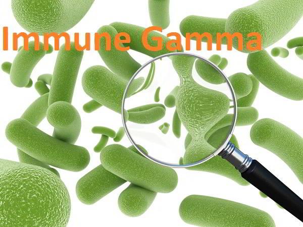 immune-gamma-trong-hoi-chung-ruot-kich-thich-dai-dai-trang-co-that